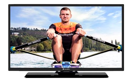Televize GoGEN TVF 32P471T černá