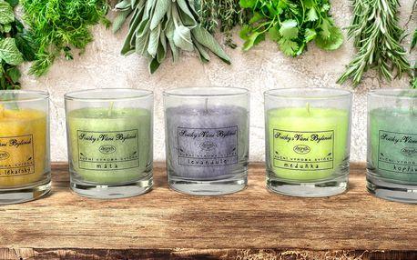 Bylinkové svíčky z palmového vosku české výroby