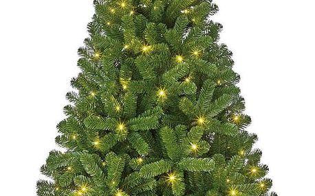 Stromek Vánoční Charlton