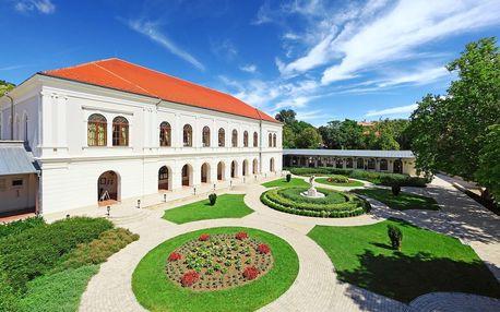 Maďarsko: Anna Grand Hotel Wine & Vital