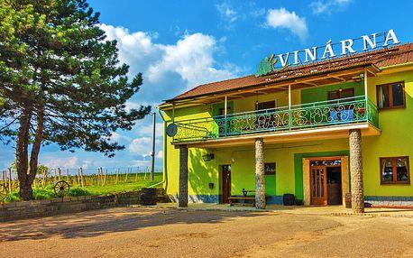 Jižní Morava v útulném penzionu s degustací lokálních vín a polopenzí + láhev vína zdarma a platnost do května 2019