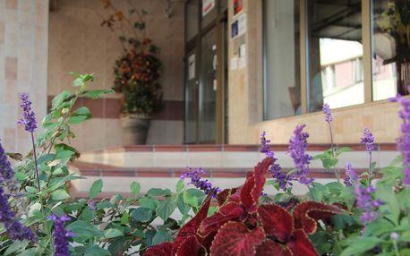 Střední Čechy: Hotel Junior Poděbrady