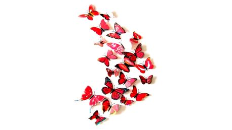 Dekorační 3D motýlci - originální samolepící dekorace na zeď - bytový doplněk, který ozvláštní pokoj