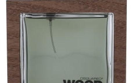 Dsquared2 He Wood Rocky Mountain Wood 100 ml toaletní voda pro muže