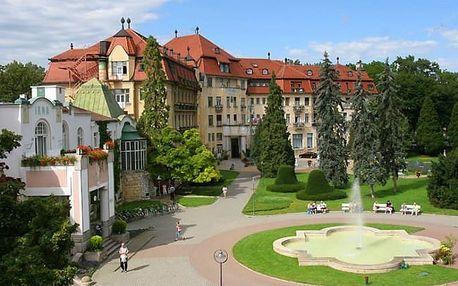 Slovensko - Piešťany na 4 až 8 dní, polopenze nebo snídaně s dopravou vlastní