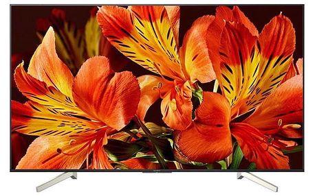 Televize Sony KD-55XF8505