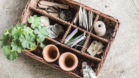 IB LAURSEN Velký proutěný box s přihrádkami Willow, přírodní barva, proutí