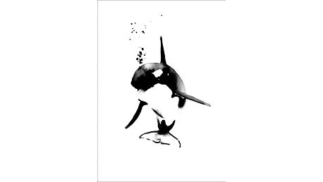 Magdalena Tyboni DESIGN Plakát Mini Killer Whale A4, černá barva, papír