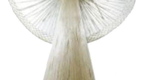 Anděl z kukuřičného šustí