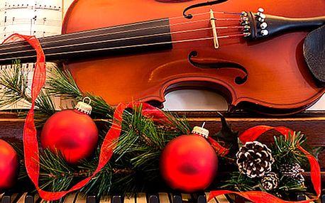 Vánoční koncert ve Smetanově síni v Obecním domě. Vstupenka na koncert pro jednu osobu.