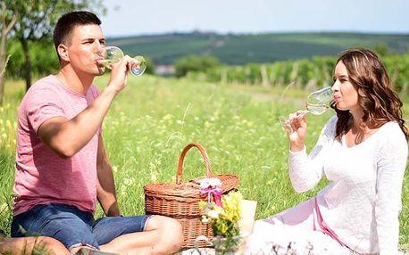 3denní pobyt se snídani a láhví vína pro 2 v penzionu Jako ze škatulky v Bořeticích