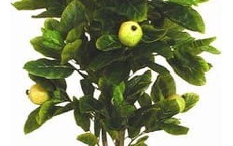 Strom guave, 165 cm, Autronic