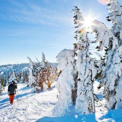 Český les s privátním wellness a aktivitami