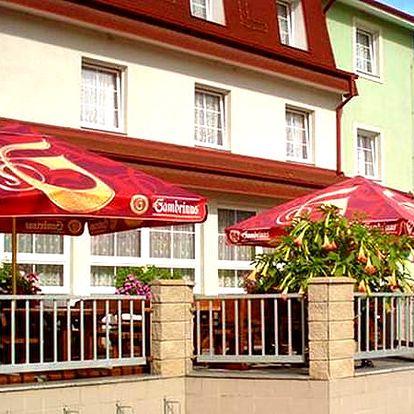 Třeboňsko - pobyt v Hotelu Alf pro dvě osoby s polopenzí, koupaliště, vyjížďky na kolech.