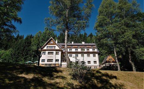 Šumava: Hotel Vydra