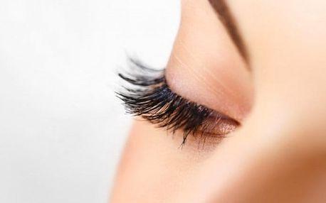 Prodloužení řas metodou Blink lashes nebo i doplnění v pražském studiu Beauty Glamour