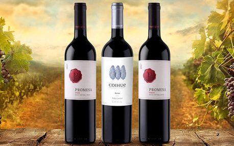 6 lahví červených vín z Chile: Merlot i Syrah