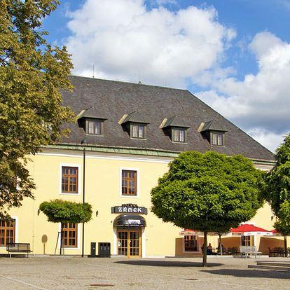 Haná v zámeckém hotelu kousek od Olomouce s návštěvou Zoo a polopenzí + možnost svatomartinského pobytu