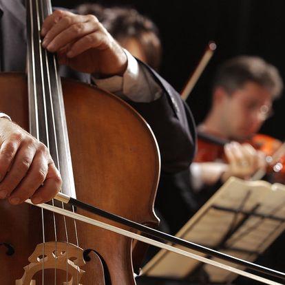 Vstupenka na libovolný koncert v Obecním domě