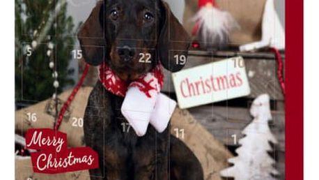 Adventní kalendář pro psy