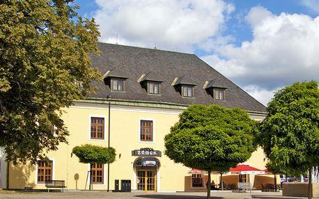Haná v zámeckém hotelu kousek od Olomouce s návštěvou Zoo a polopenzí