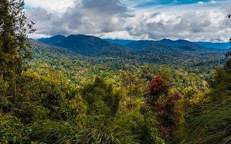 Malajsie a deštné pralesy, Asie, Malajsie, letecky, strava dle programu