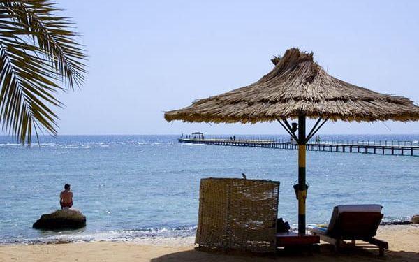 Hotel FLAMENCO BEACH AND RESORT, Marsa Alam (oblast), Egypt, letecky, all inclusive (12.5.2019 - 19.5.2019)3