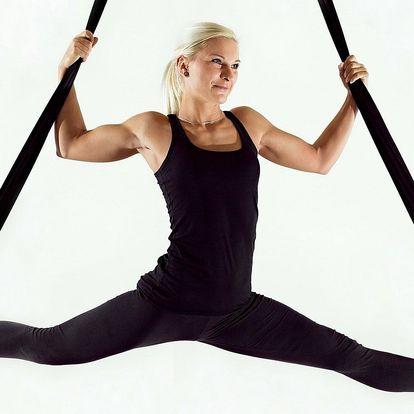 Workshop pole dance, aerial silks i aerial hoop