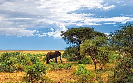 Safari – Sloni V Soumraku