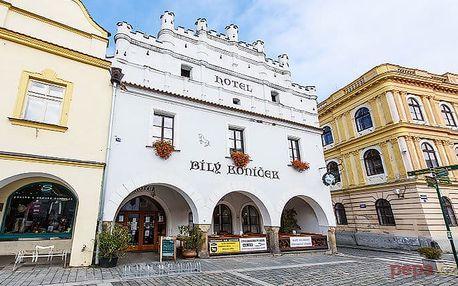 2 až 4denní wellness pobyt pro 2 osoby v hotelu Bílý koníček*** v Třeboni