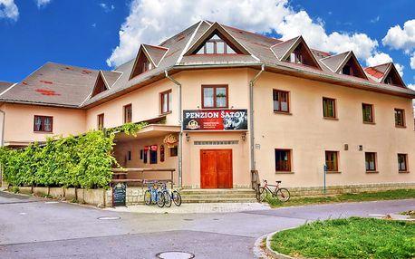 Jižní Morava v penzionu ve vinařské obci u Znojma s degustací, neomezenou konzumací vína, polopenzí a 2 výlety