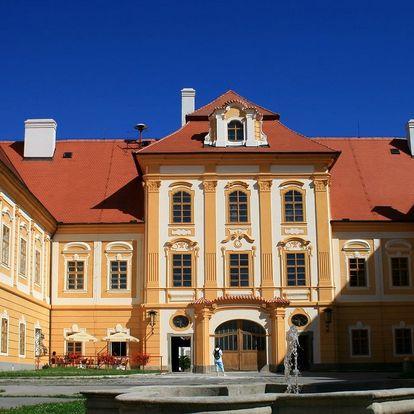Hotel Alf v jižních Čechách s polopenzí