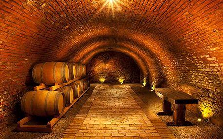Pobyt ve Vinařství Přítluky s degustací a večeří