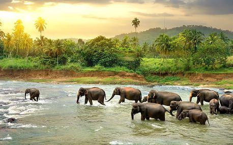 Cesta za Perlou Indického oceánu, Srí Lanka, letecky, polopenze