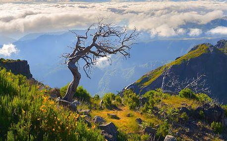 Divoká Madeira, Portugalsko, letecky, polopenze