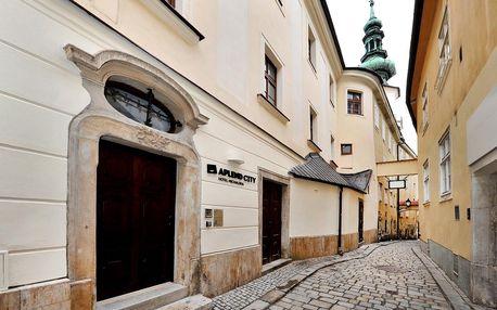 Bratislava a okolí: Hotel Michalska