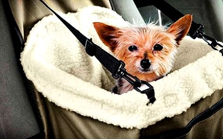 TIP! Přepravní taška pro pejska do auta