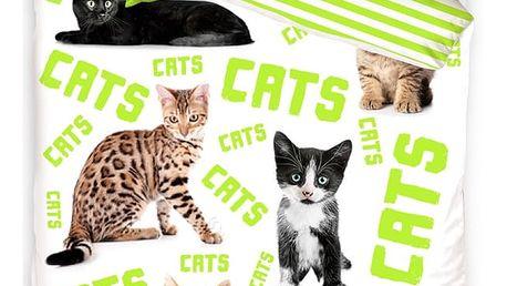 TipTrade Bavlněné povlečení Cats, 140 x 200 cm, 70 x 90 cm