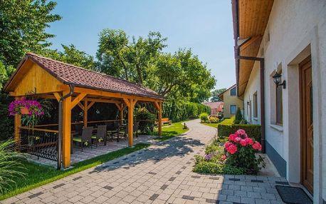 Slovensko - Piešťany na 3 až 5 dní, bez stravy s dopravou vlastní
