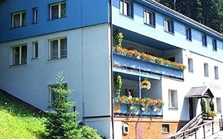 Pobyt v Krkonoších s Aquaparkem či vodním světem pro dva. Lanovka na Sněžku 1km od penzionu.