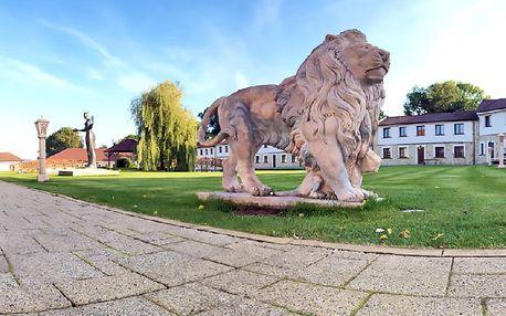 Absolutní relax: Střední Čechy v luxusním hotelu Lions s neomezeným vstupem do vodního wellness a all inclusive