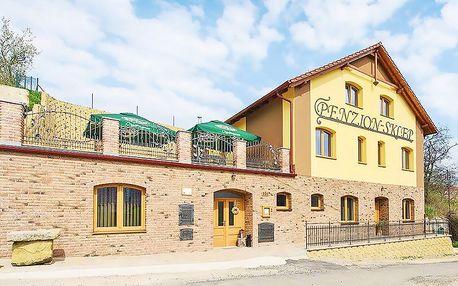 Oblíbená jižní Morava v novém penzionu s neomezenou konzumací vína a zapůjčením kol + snídaně, nebo polopenze