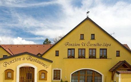 Pobyt pro dva v Penzionu a restauraci U Černého čápa, moravské víno, snídaně a hodina ve vířivce.