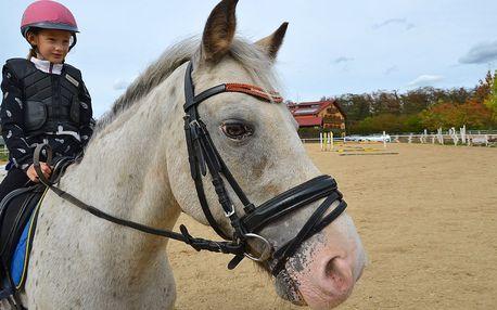 Do Brna: pobyt s polopenzí pro milovníky koní