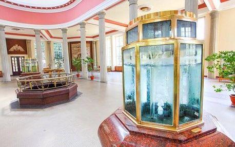 Františkovy Lázně v Penzionu Hortenzie se vstupem do Aquafora a polopenzí