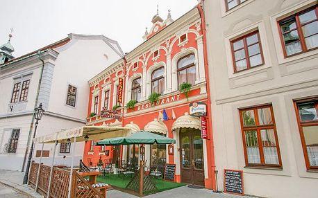 Kroměříž - ochutnávka vín, dezert i sauna