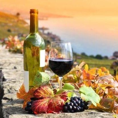 Degustační vinařský pobyt v Penzionu Rendezvous u zámku Valtice se snídaní