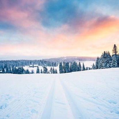 Šumava a Bavorský les - 1 km od ski areálu