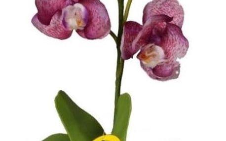 Umělá Orchidej v květináči fialová, 35 cm