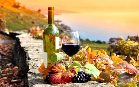 Vinařský pobyt s rautem u zámku Valtice